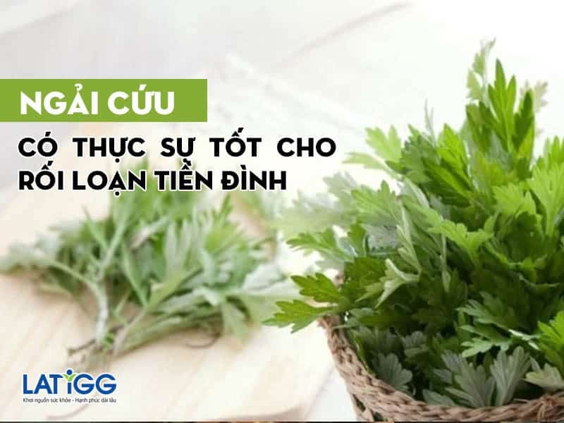 ngai-cuu-co-that-su-tot-cho-roi-loan-tien-dinh