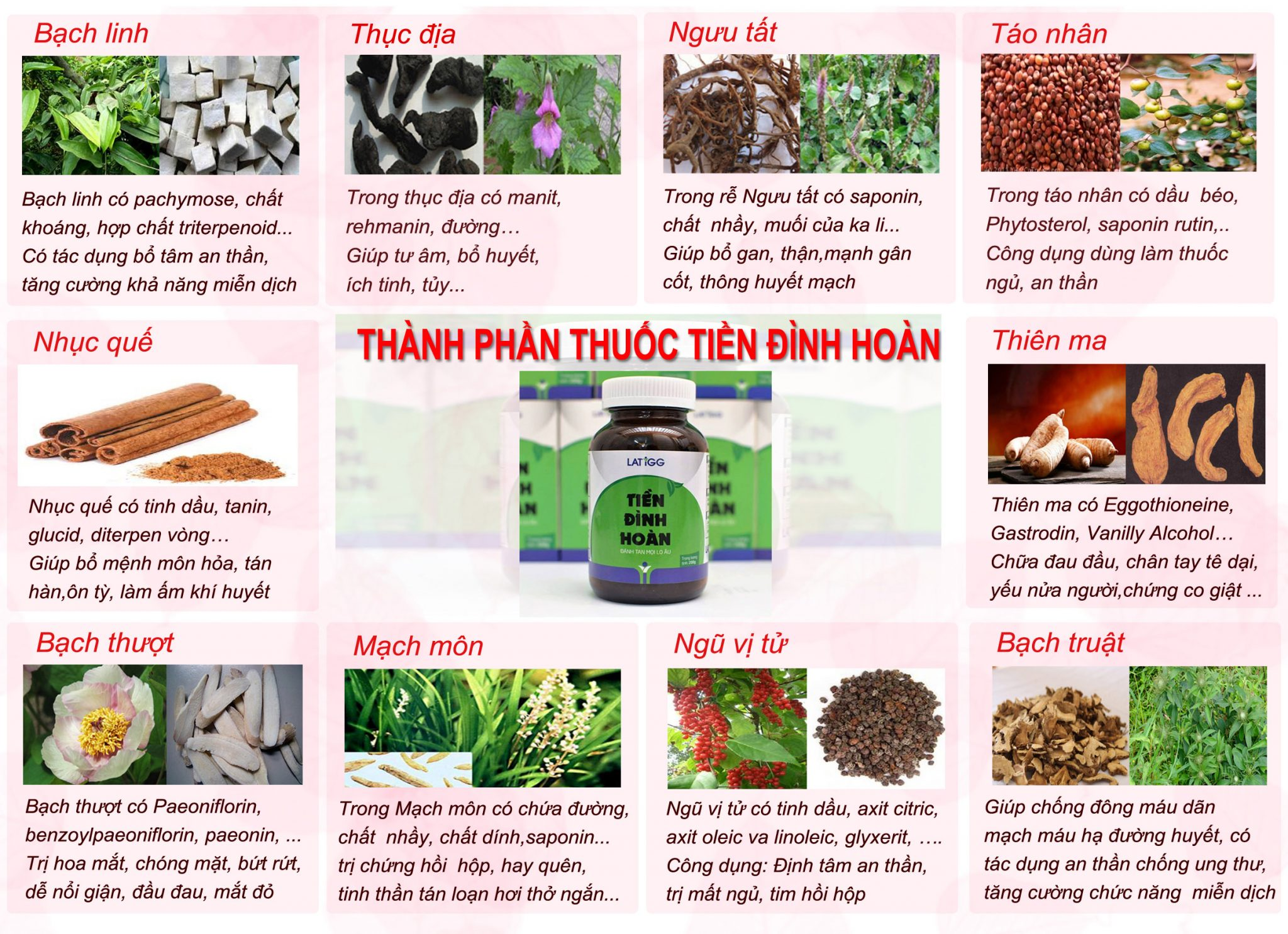 thanh-phan-tien-dinh-hoan-2
