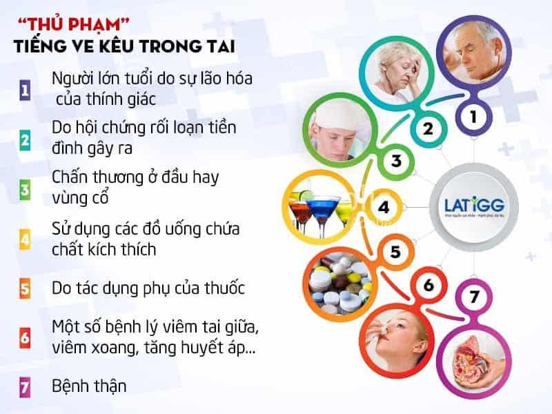 thu-pham-lam-tieng-ve-keu-trong-tai