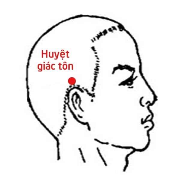 huyet-giac-ton