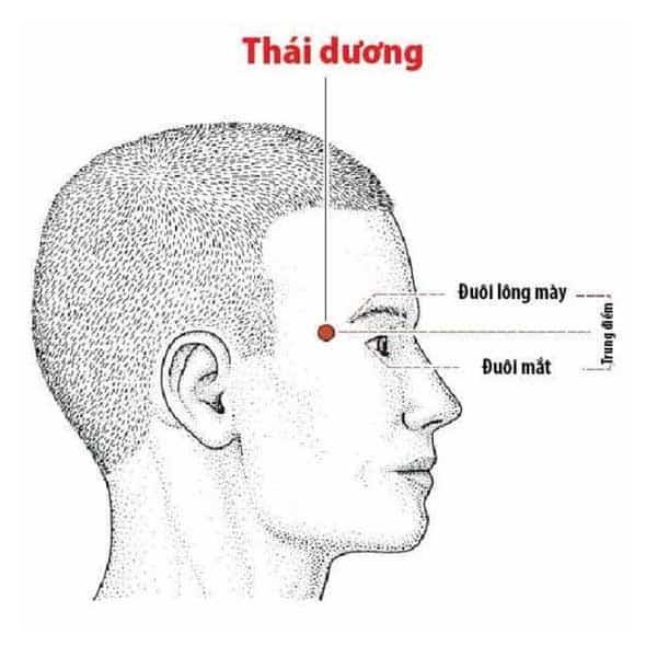 thai-duong